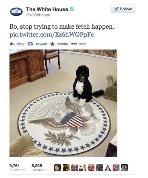 White House Twitter_Mean Girls