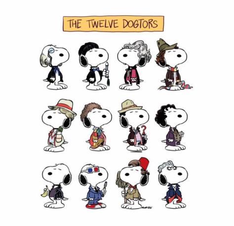 12-dogtors