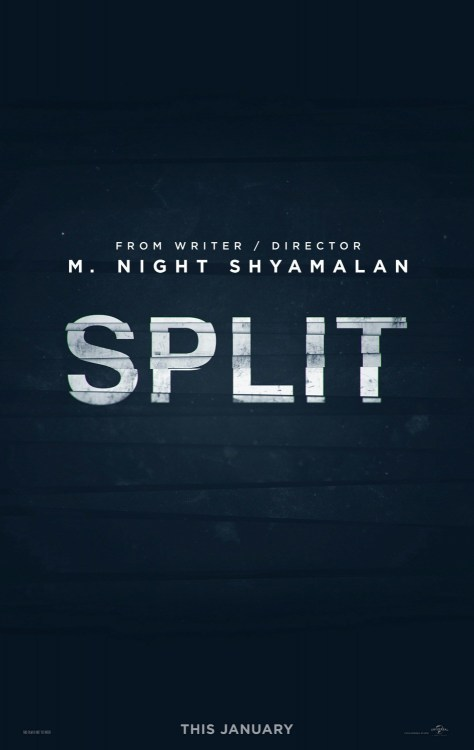 split-poster-1-india-release